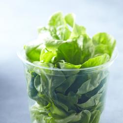Image de La Salade Verte